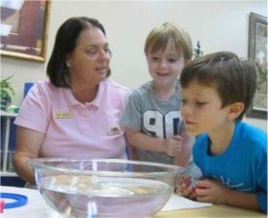 Under the Sea Preschool Activities sink float science